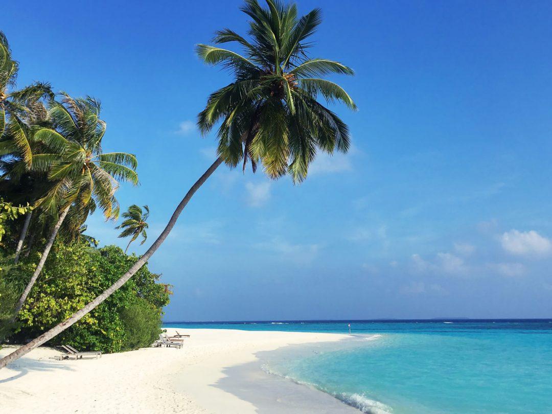 Vacanze dipendenti Oceano Indiano